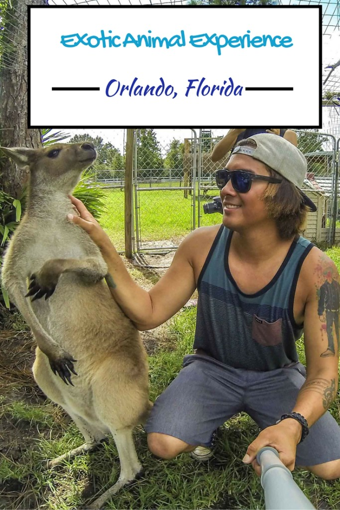 Exotic Animal Experience Orlando Florida | AGlobalStroll.com