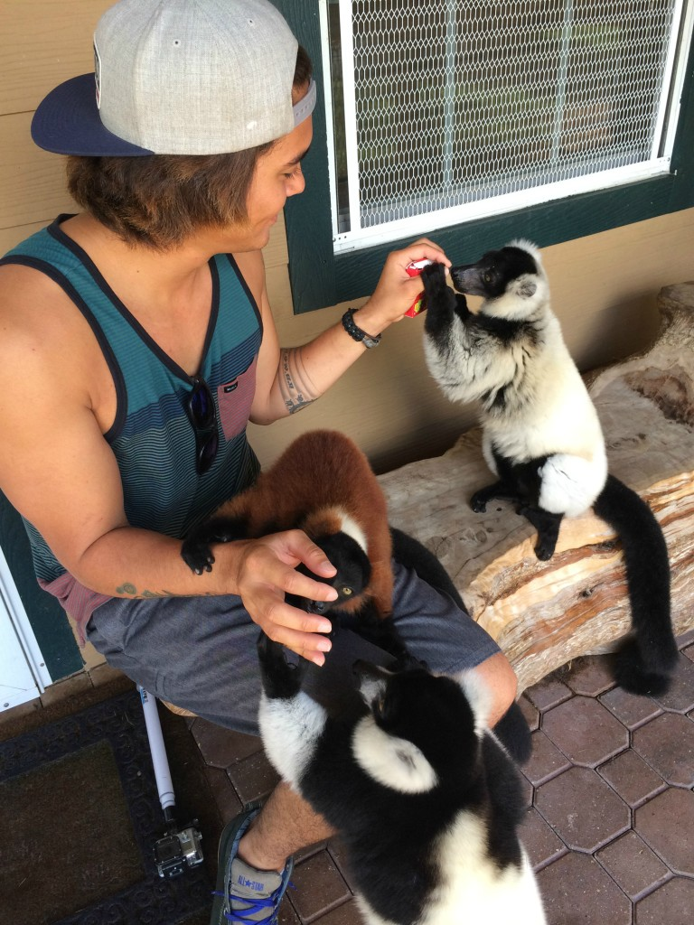 Exotic Animal Experience Orlando Florida | AGlobalStroll