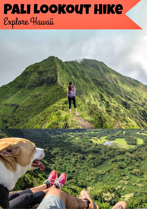 Pali Hike Pin