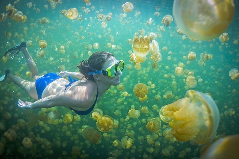 Palau Travel Destination 2016