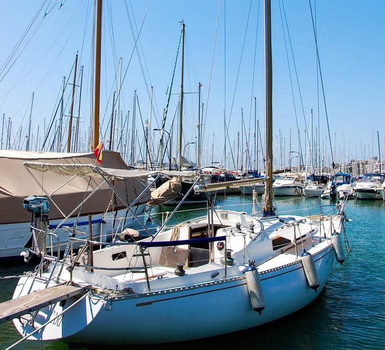 Airbnb Rental Boat Spain