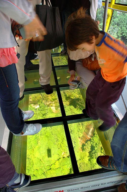 Scenic Skyway Scenic World Australia