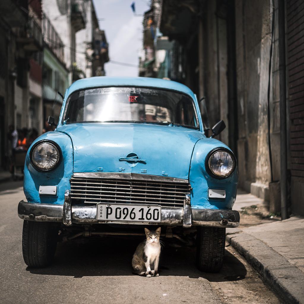 Havana Cuba Car
