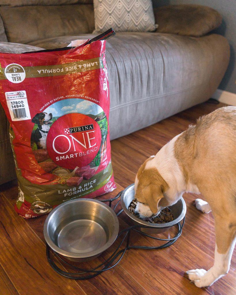 Purina ONE Dog Food Lamb and Rice